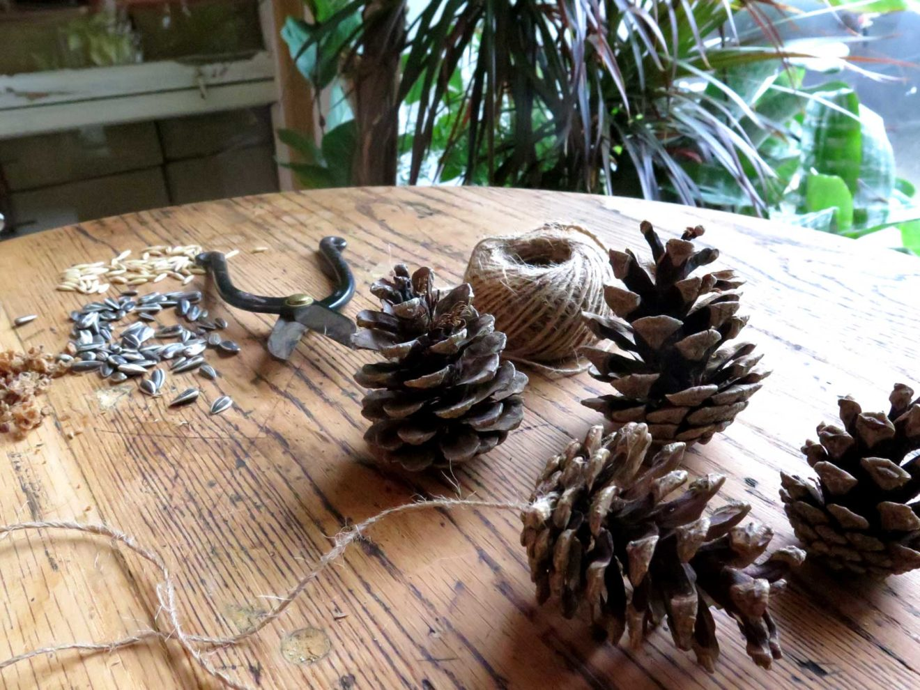 Fugle på altanen – opskrift på fuglekugler og fuglekogler
