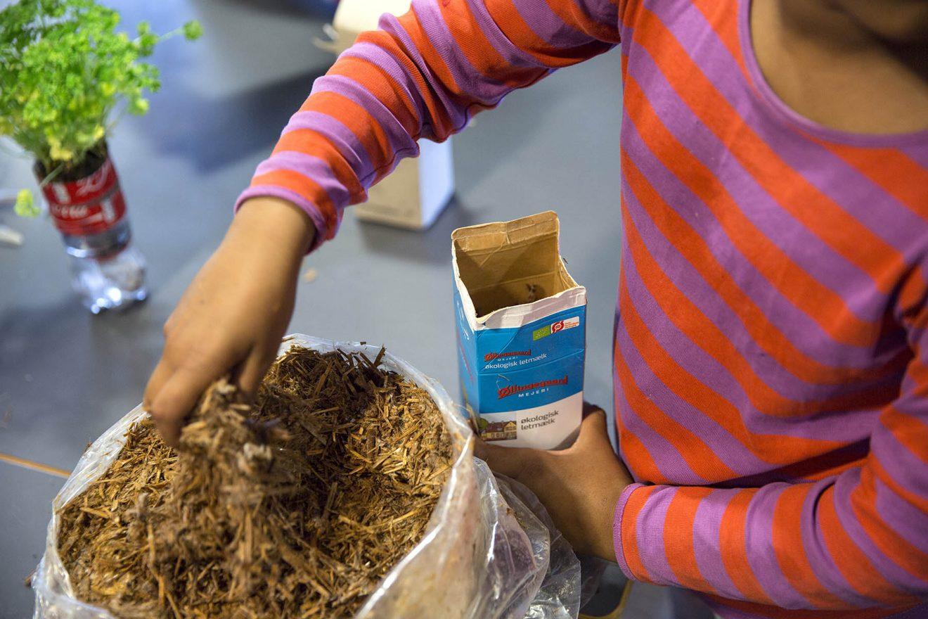 Åbent svampeværksted - lav din egen SvampeBox