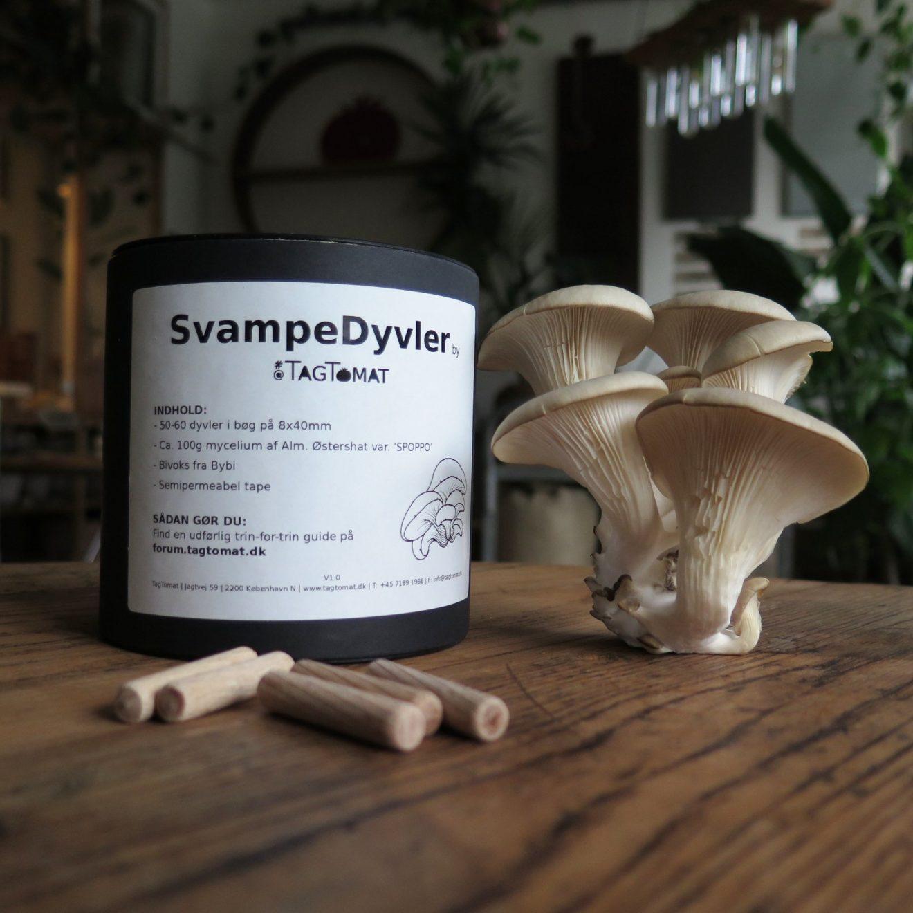 SvampeDyvler - gør-det-selv-kit til træ