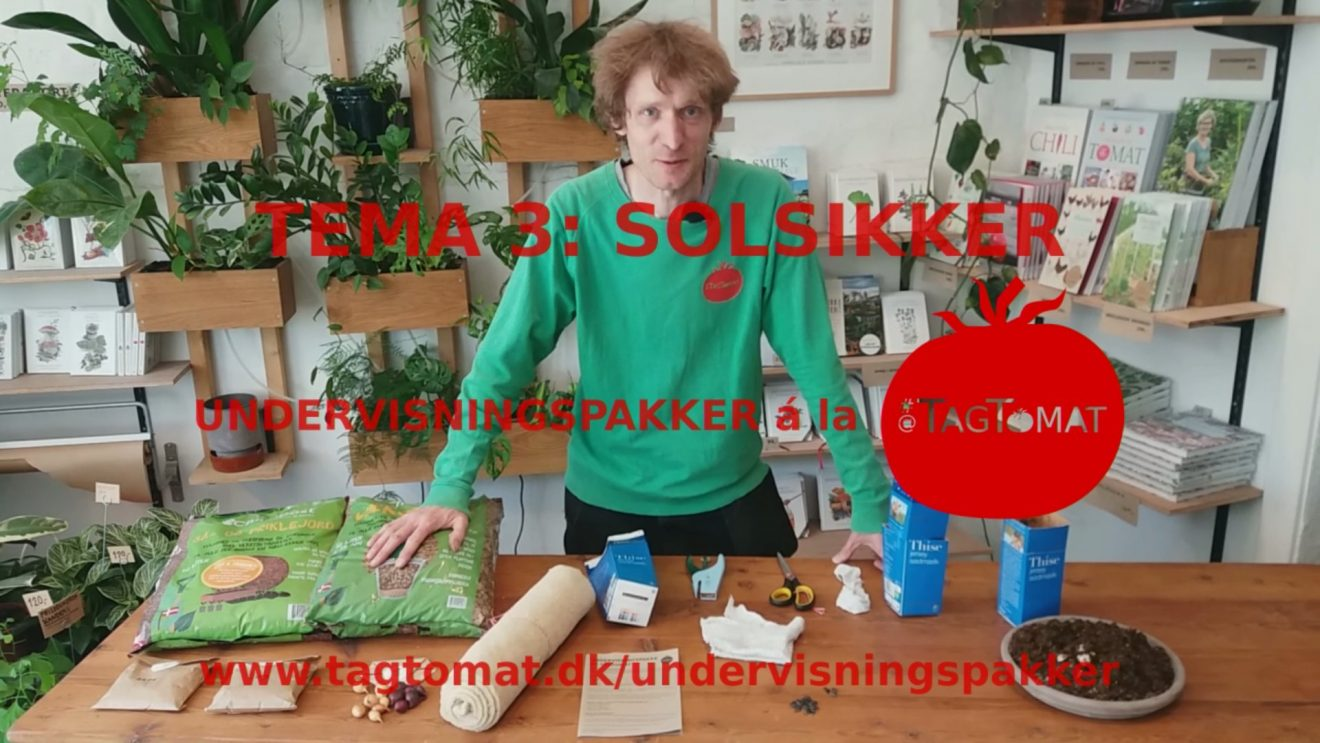TagTomat - Tema 3 - Solsikker - Cover-web