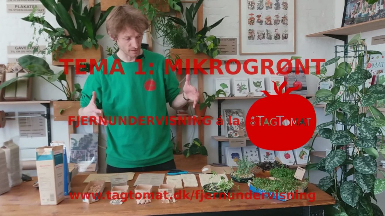 Fjernundervisning Tema 1 – Mikrogrønt – Opstartsvideo dag 1