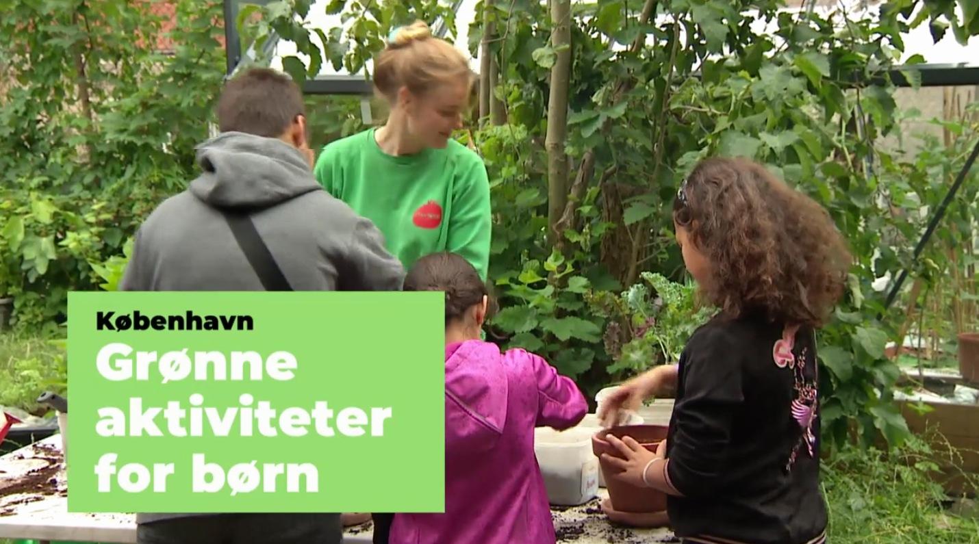 Grønne-sommmeraktiviteter_tv2lorry_2020-07-09_web