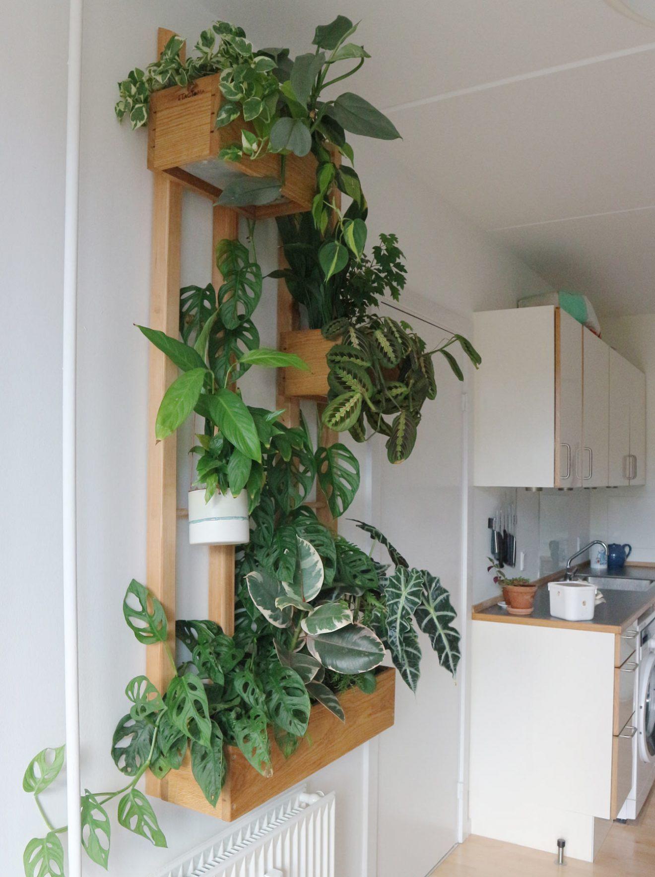 En skræddersyet plantevæg til køkken-alrummet